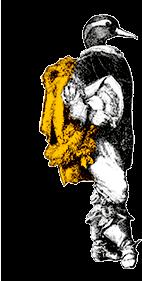 canard-jaune-retourné